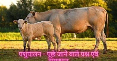 पशुपालन – पूछे जाने वाले प्रश्न एवं समाधान | pashupalan question answer
