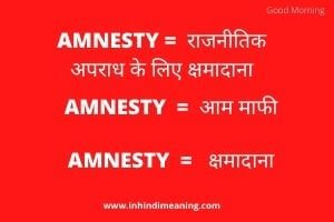 Amnesty Meaning in Hindi - Amnesty In Hindi Meaning