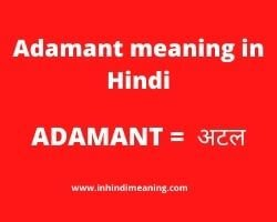 Adamant meaning in Hindi with Best 10+ synonym - Adamant