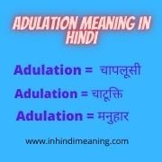 Adulation in Hindi meaning - Adulation meaning in Hindi