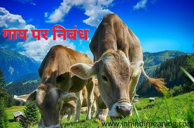 Best - Cow essay in Hindi and English for class 1,2,3...,Cow essay in Hindi 10 lines